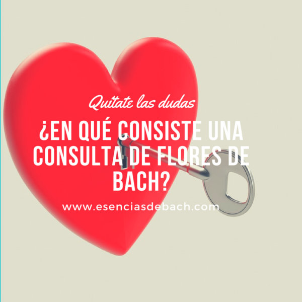 consulta de flores de bach