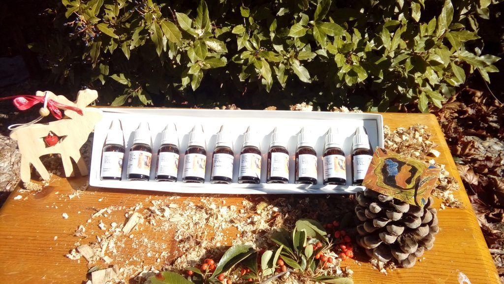 mini kit de flores de bach navideño